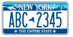 Sample Of Current New York State Plate